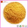 Orange Masterbatches for Polypropylene Resins