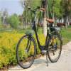 "Chinese Cheap 26""City Electric Bike for Sale (RSEB-203)"
