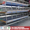 4 Tiers Chicken Broiler Cage for Poultry House Design
