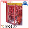 Master Section with Rack Supporting Building Lifting and Hoist