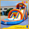 Colorful Inflatable Pool Water Slides Summer Slide (AQ1007)