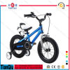 2016 Freestyle Cool Kids Bicycle/Child Bike Boy Bike Girl Bike in Hebei Province China for Price Children Bicycle
