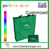 Promotional Non Woven Folding Shopping Bag Tote Bag Handle Shopping Bag