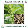 China Origin Sesame Seed / Sesamum Indicum Powder Extract with Sesamin