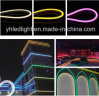High Brightness SMD2835 Flex Rope Multi-Color R/G/B/Y/W/Ww for Garden/Park Decoration