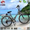 Wholesale 250W En15194 Electric City Bike Cheap Road Bicycle