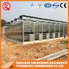 Agriculture Aluminum Profile Mushroom Glass Green Hosuse