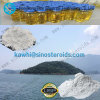 Anabolic Steroids Halodrol Turinadiol 50 CAS 2446-23-3 for Muscle Gaining