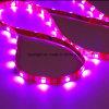 Inddoor IP30 LED Strip Light String Light Copper Rope for Landscape Decoration