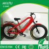 Hi Power Mountain Electric Fat Bike Dirt Bike 750W