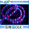High Voltage Christmas Horizonal LED Rope Light