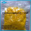Fat Burning DNP Material Weight Loss Supplement DNP Powder