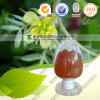 Cranberry Extract Anthocyanin 25% Good Quality