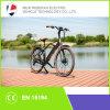 250W Fashion Dutchman Bike Electric Bike