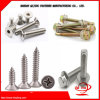 Fasteners / Machine Screw/Self Drilling Screw Self /Self Tapping Screw//Drywall Chipboard Screw/Furniture Screw