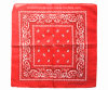 China Factory OEM Produce Custom Double Sides Print Red Paisley Cotton Bandanna Scarf