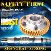 Construction Hoist Motor Spare Part Worm and Gear