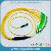 MPO-FC Single Mode Duplex Fiber Optic Patch Cord