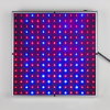 New Square 14W LED Grow Light Full Spectrum 225 Blue LED Lamp Light for Vegetables Lettuce