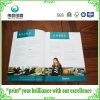 Saddle Stitching Softcover Paper Promotion Printing Book