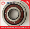 High Quality Deep Groove Ball Bearing 6304 Tb. P63