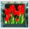 Indoor P7.62 Full Color LED DOT Matrix Display