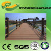 Solid/Hollow WPC Decking Floor with CE
