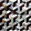 White Lip Mop Shell and Pen Shell Trapezoid Mosaic