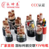 XLPE Insulated /PVC Sheathed Power Cable