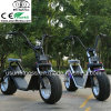 New Design Aluminum Alloy Material Electric Scooter with Remove Battery