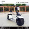 City Mobility Electric Scooter 2017 New Model Citycoco 1000W/60V/12ah Brushless Adult 2 Wheels