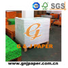 Translucent Tracing Paper Card in Sheet with Natural Packing