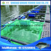 Carp Fish Farming, Catfish Farming Equipment for Sale