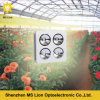 High Energy-Efficiency Powerful COB LED Grow Light 800W