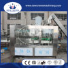China High Quality Monoblock 3 in 1 Juice Drink Filling Machine (Glass bottle with aluminum cap)