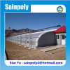 Cold Area Used Solar Greenhouse for Strawberry