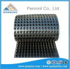 Best Selling Good Quality HDPE Dimple Drainage Board for Earthwork