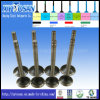 Engine Valves for Perkins T4 3142L072 Spare Part