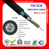 Anti-Moisture, Anti-Crush Double Armored Optical Fiber Cable with Aluminium Tape