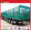 Truck Trailer / Bulk Transport Box Trailer with Cage