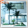 Guangzhou Wholesale Plastic Palm Tree Fiberglass Artificial Coconut Palm Tree