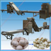 Automatic Electric Whole Garlic Peeling Production Line