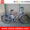 Electric Bicycle with CE/En15194 Certificate (JSE46)