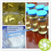 Enanject 600 Testosterone Enanthate 600mg/Ml for Bodybuilding