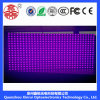 P10 Outdoor Single-Purple LED Module