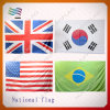 Custom Printing Advertising World National Country Flags (HYADF-AF008)