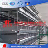 H Type Chicken Egg Layer Cage Best Price for Nigeria Farms