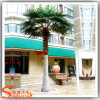 Customized Outdoor Decoration Artificial Palm