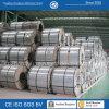 Stocked PPGI Coil for Sale