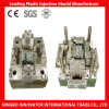 Plastic Mould Injection Mould Plastic Injection Moulding
